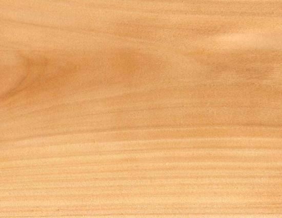 Pinus Elliotis Wood