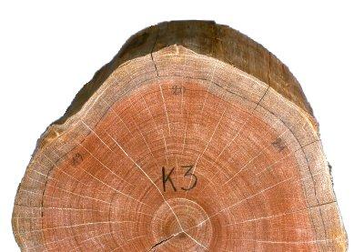 Kapur Timber